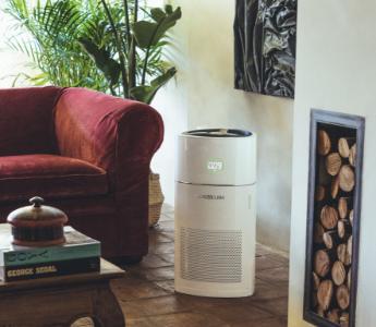 Purificador de aire instalado en el hogar con planta